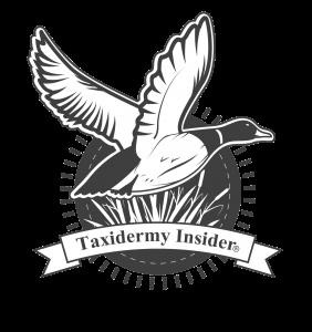 taxidermyinsiderlogo